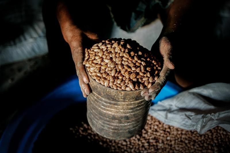 food, haiti, food crisis,